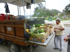Canoa Vegetable Truck